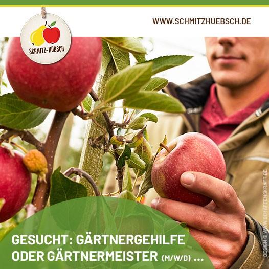 210903-gaertner-schmitzhuebsch